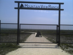 Mountain View.  I don't want to view any more mountains