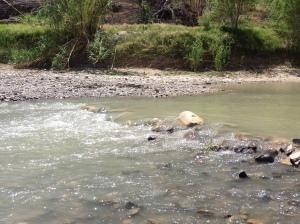 Class V rapid on the Rio Grande